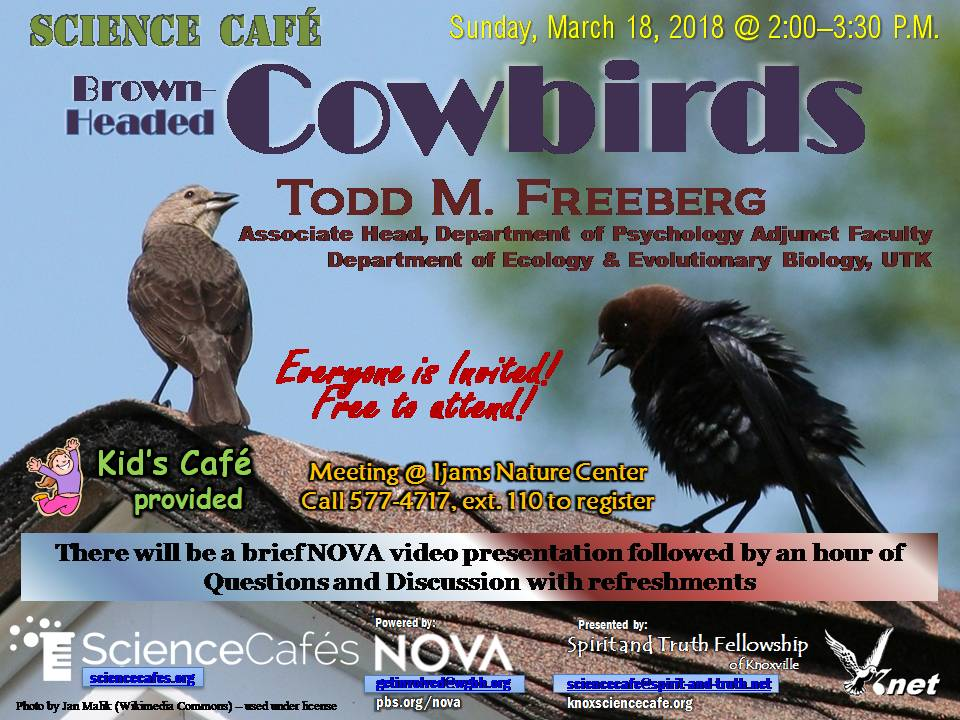 March Science Cafe Flyer